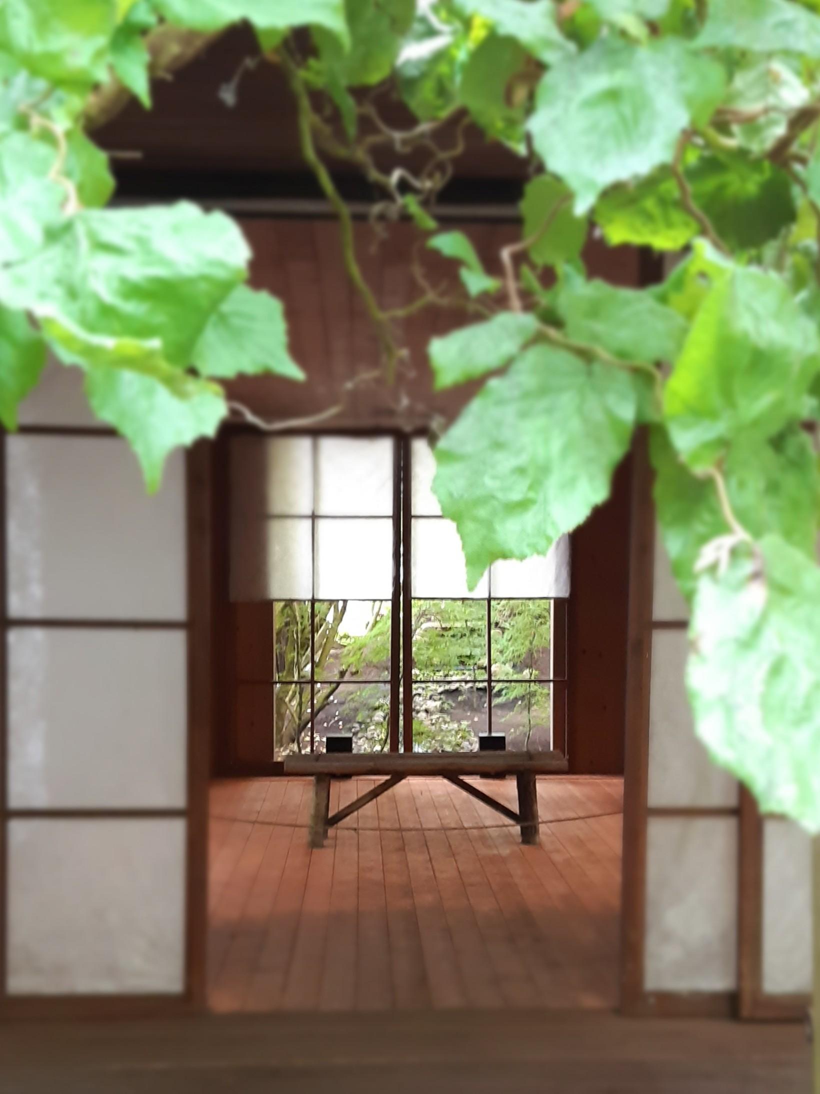 Japanilainen puutarha Viherpaja